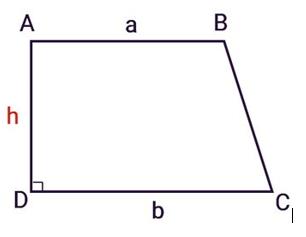 Hình 3